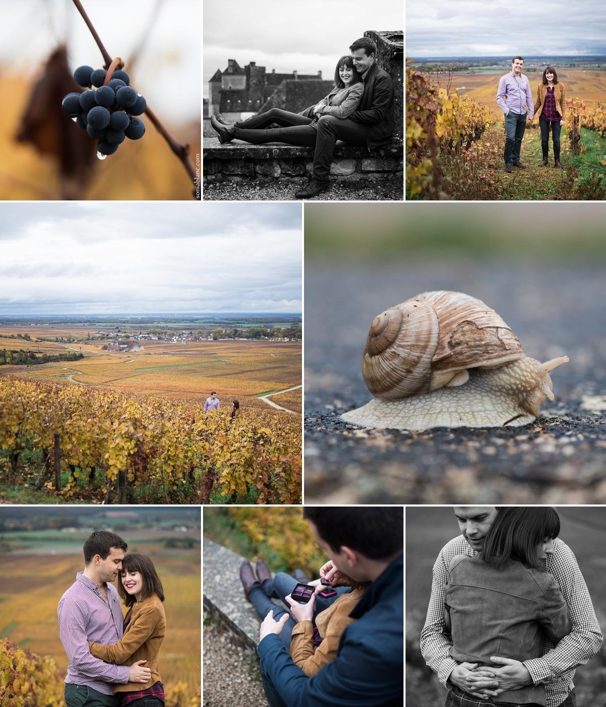 seance photo engagement - dijon - cote d'or