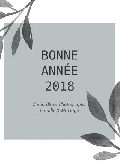 Bonne année 2018 - sonia blanc photographe