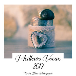 Meilleurs voeux 2019 - Sonia Blanc Photographe - Dijon